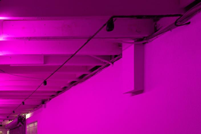 Untitled: Social Commentary— Gustavo Matamoros at Dimensions Variable (DV)