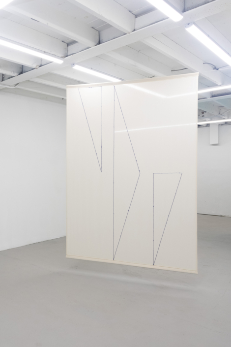 Felipe Mujica, There Are No More Exotic Countries in Latin America (Curtain 14), 2018